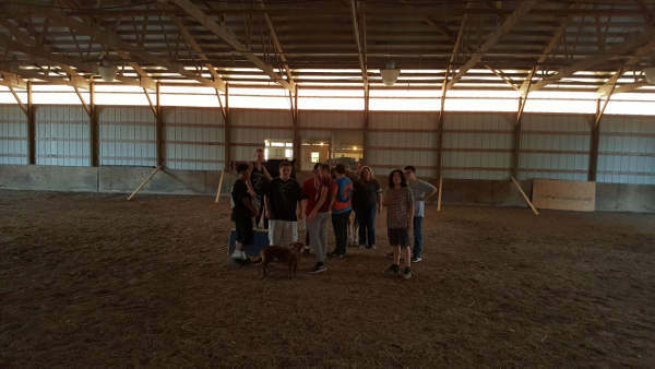 Therapeutic healing with horses