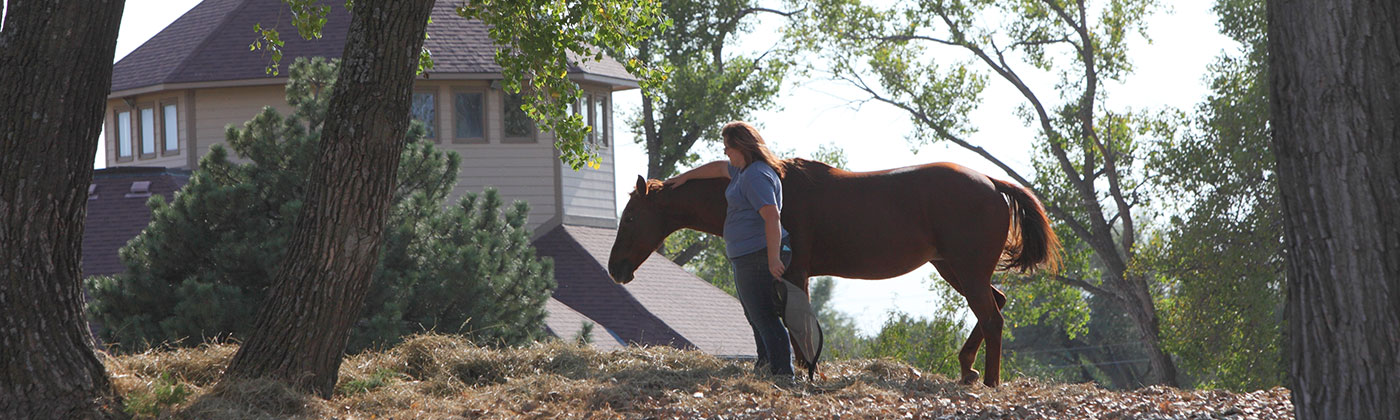 equine therapist with horse